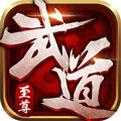 武道至尊游戏1.0 安卓版