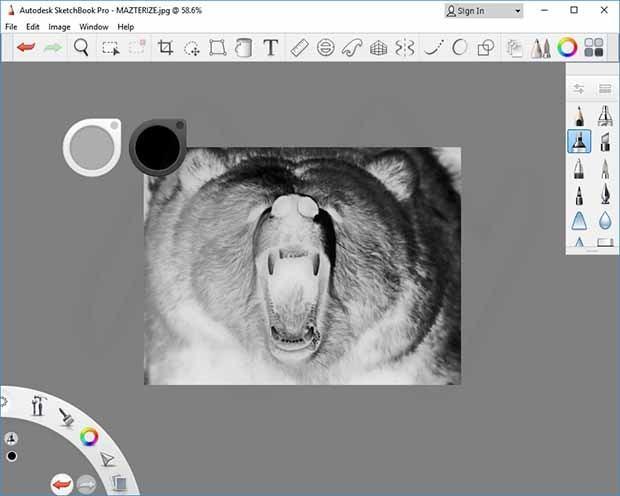 Autodesk SketchBook Pro2020免�M版截�D0