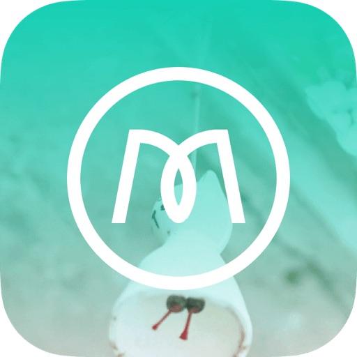 魔秀壁�app1.9.1.0 安卓版