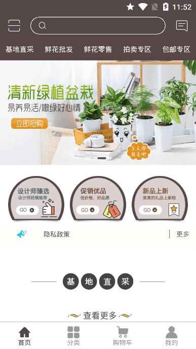 七彩云菊app截图