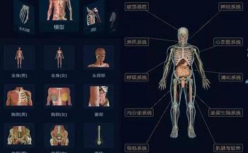 可以看骨骼肌肉的app