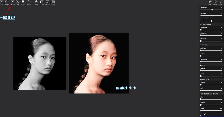 Picture Colorizer pro(AI人工智能黑白照片上色软件)截图1