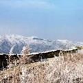 2020武汉的第一场雪作文
