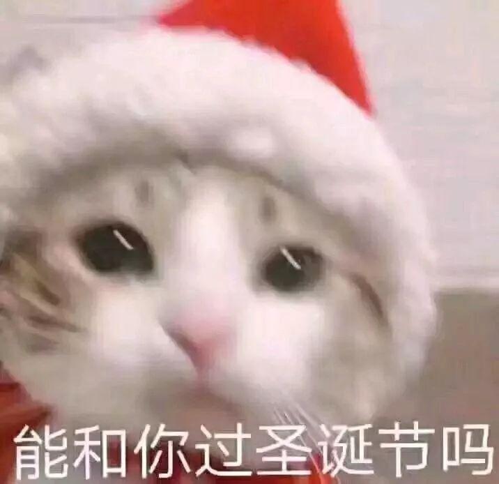 单身圣诞节句子表情包