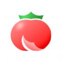 小�f番茄�u��x器�件