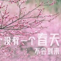 武汉32张感恩海报完整版