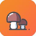 小蘑菇自动接单app