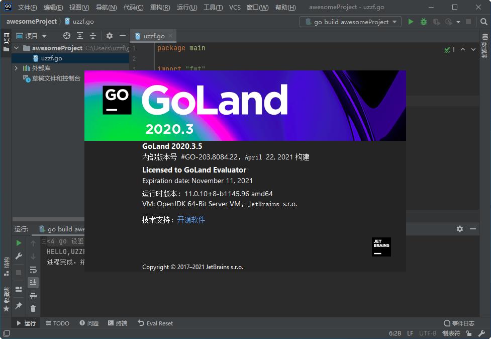 JetBrains GoLand 2020绿色版截图1