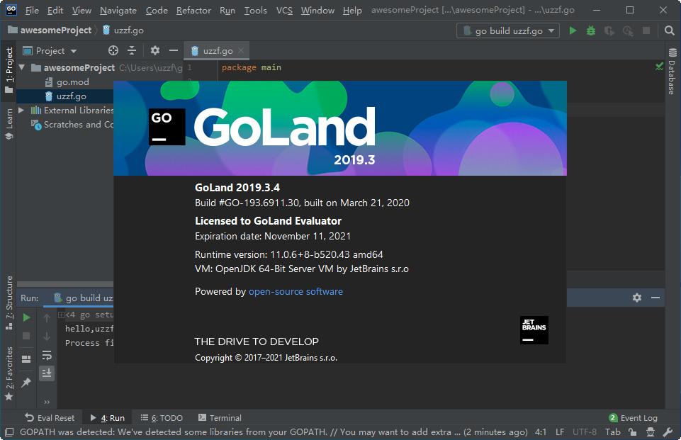JetBrains GoLand 2019绿色便携版截图1