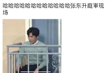 2021春晚��B表情包gif甄子丹�蔷�