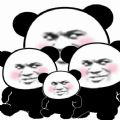 抖音熊猫走路表情包gif