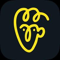 抖音��雅黑特效app1.0 安卓版