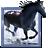 Adobe Premiere Pro 1.5(PR1.5)