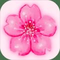 花�_�r�九游版1.0最新版